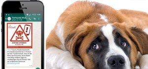 Neues WhatsApp-Service warnt Tierhalter vor Giftködern