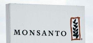 Monsanto wird Bayer-Offerte zurückweisen