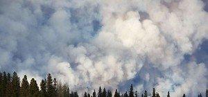 Waldbrände in Kanada: 25.000 sollen ausgeflogen werden