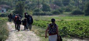 Fast 100 Migranten in Lkw in Mazedonien entdeckt