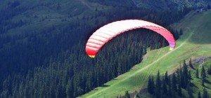 Tödlicher Gleitschirm-Absturz aus zehn Metern Höhe in NÖ: Paragleiter starb