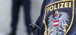 Mistplatz-Einbrecher in Liesing festgenommen