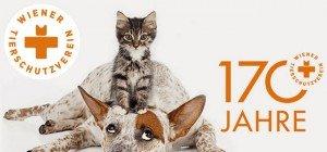 170 Jahre Wiener Tierschutzverein: Große Jubiläumsfeier