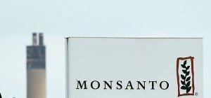 EU genehmigte drei Sorten Gen-Soja von Monsanto und Bayer