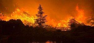 Riesiger Waldbrand in Kalifornien außer Kontrolle