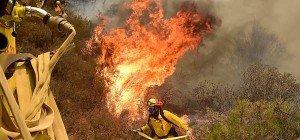Feuerwehr macht Fortschritte bei Waldbränden in Kalifornien
