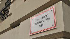 Beim Freigang Polizisten angefahren: Prozess gegen Häftling in Wien