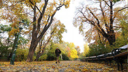 Goldenes Herbstwetter endet am Sonntag mit Regen und Wind
