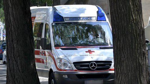 Zwei Personen verletzt, Wohnung demoliert & Diebstahl begangen