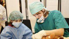 Keine Angst vorm Arzt: Teddy-Spital eröffnet