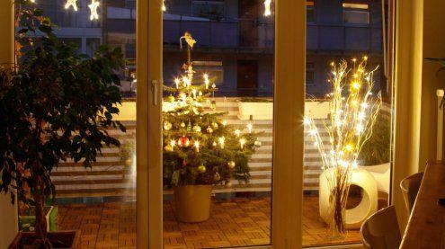 Grünt nicht nur zur Weihnachts-zeit: Der Christbaum im Topf