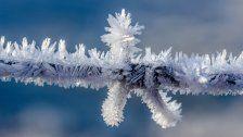 Kältemythen auf der Spur: Was stimmt?