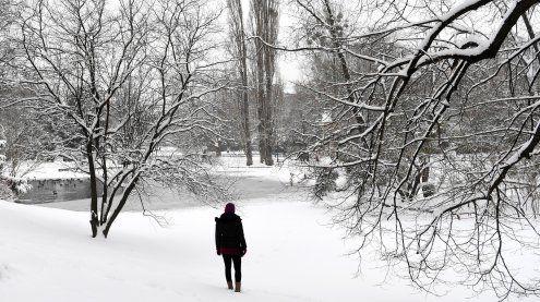 Wien: Wochenende bringt Sturm und winterliche Temperaturen