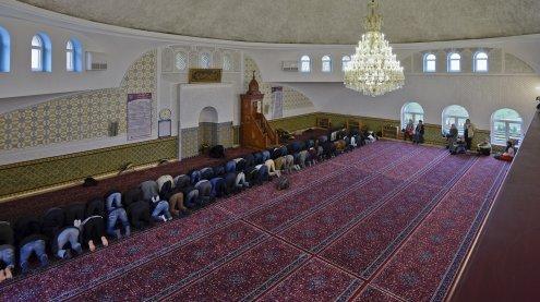 Wiener Studie: Flüchtlinge sind gleich religiös wie Österreicher